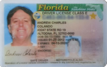 VALID? Check your Florida Driver's License
